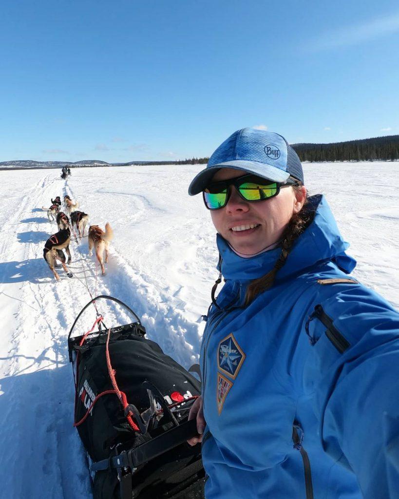 husky mushing - Swedish lapland
